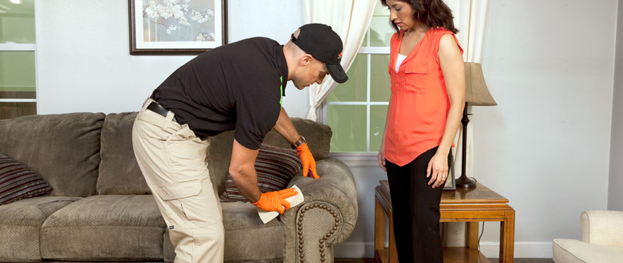 Ramona, CA carpet upholstery cleaning